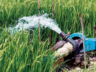 Irrigation-in-medinipur